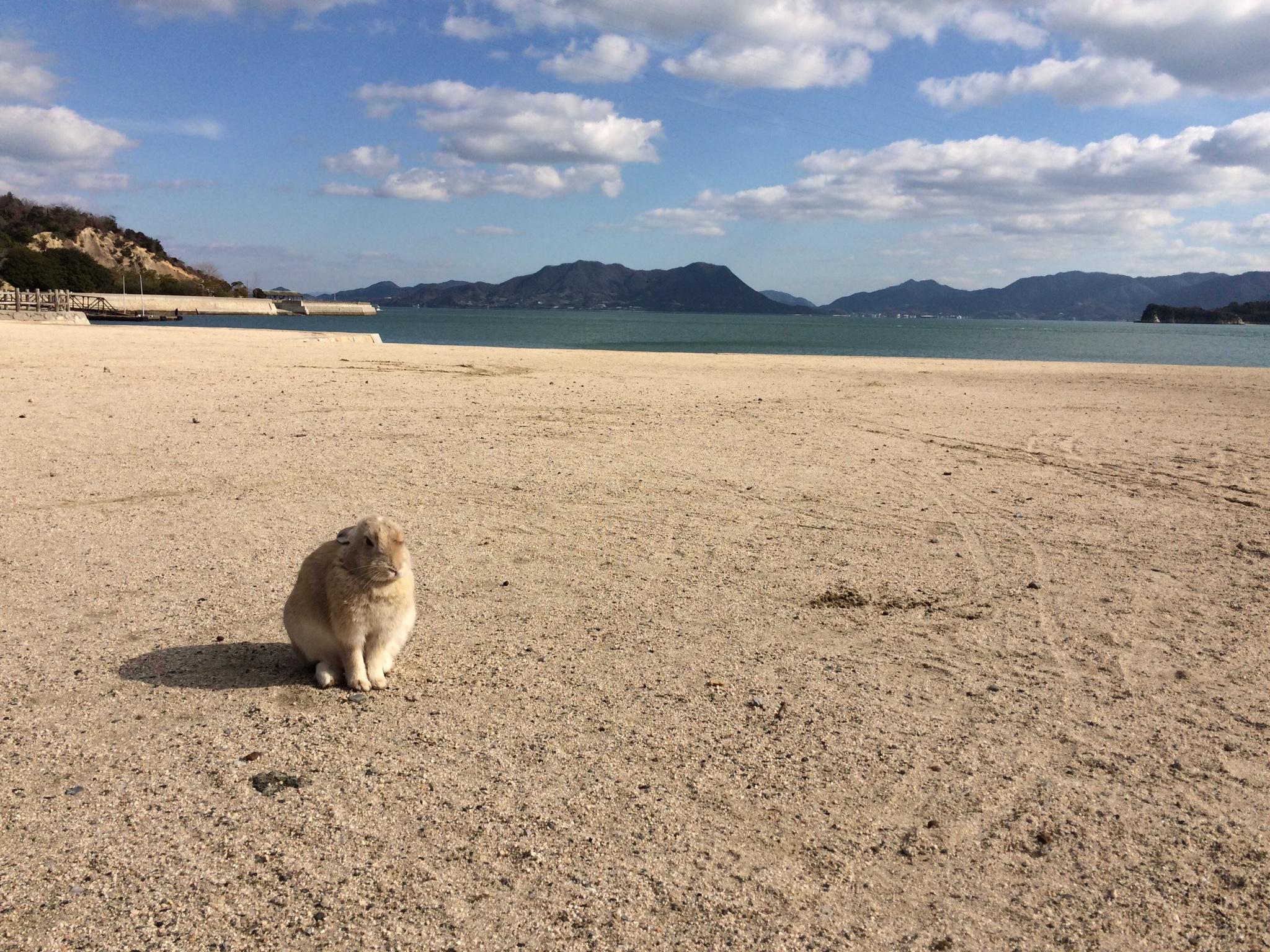 広島の魅力って?