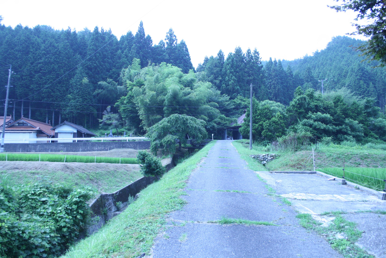 津田で見つけたほのぼの景色